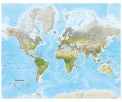 Environmental wereldkaart met veel details