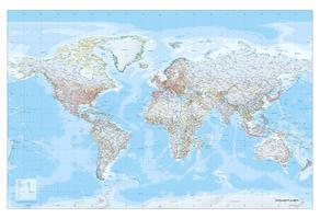 Wereldkaart XXL staatkundig gekleurde grenzen